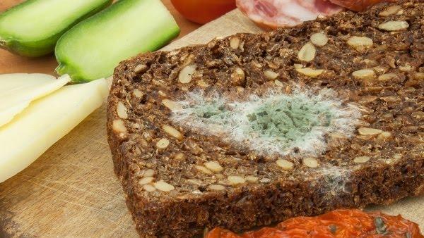 El pan es uno de los alimentos más comunes que se contaminan con moho (iStock)